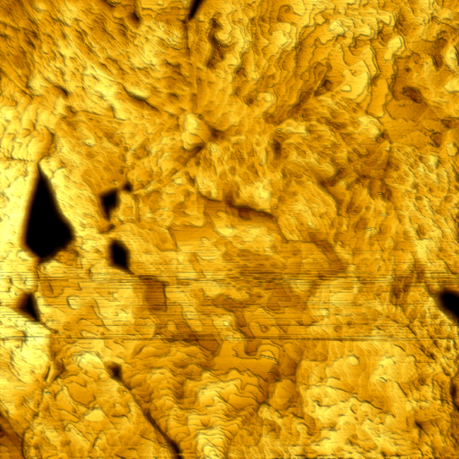 Gold. Height image. 600 nm, 50 mV, 1 nA, 1Hz line rate.